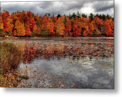 Autumn Colors Metal Print by Yelena Rozov