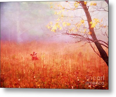 Autumn Dreams Metal Print by Darren Fisher