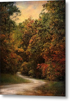 Autumn Forest 1 Metal Print by Jai Johnson