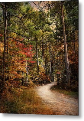 Autumn Forest 2 Metal Print by Jai Johnson