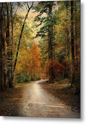 Autumn Forest 4 Metal Print by Jai Johnson