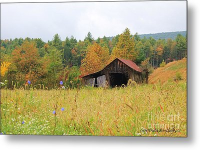 Autumn Glow Metal Print by Laurinda Bowling