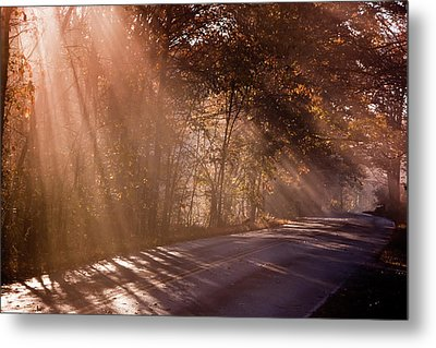 Metal Print featuring the photograph Autumn God Light by Tom Singleton