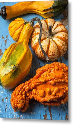 Autumn Gourds Still Life Metal Print by Garry Gay
