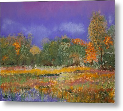 Autumn In Nisqually Metal Print by David Patterson