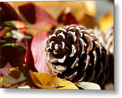 Autumn In Russet Metal Print