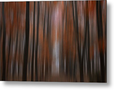 Autumn In The Midwest Metal Print by Darlene Bushue