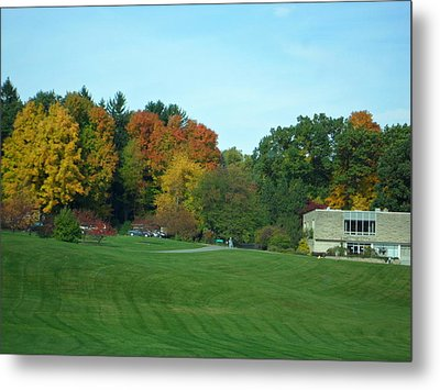 Autumn In The Trees Metal Print by Val Oconnor