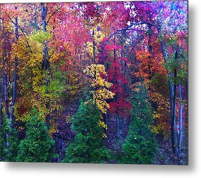 Autumn In Virginia Metal Print by Nabila Khanam