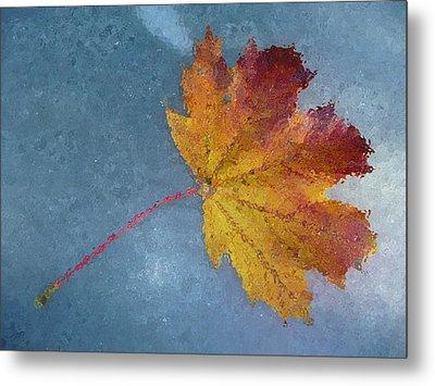 Autumn Leaf Under Glass Metal Print by Margie Avellino