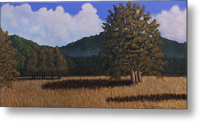 Autumn Meadow Metal Print by Janet Greer Sammons