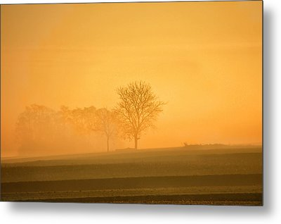 Autumn Morning Metal Print by Philippe Sainte-Laudy Photography