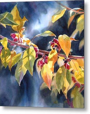 Autumn Plums Metal Print by Sharon Freeman