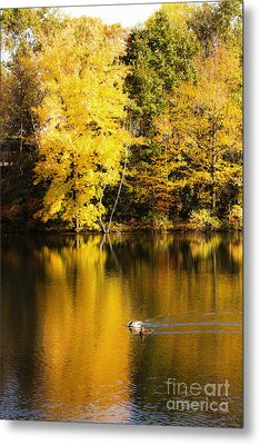Autumn Pond Metal Print by Leslie Leda