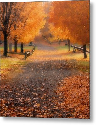 Autumn Metal Print by Raymond Earley