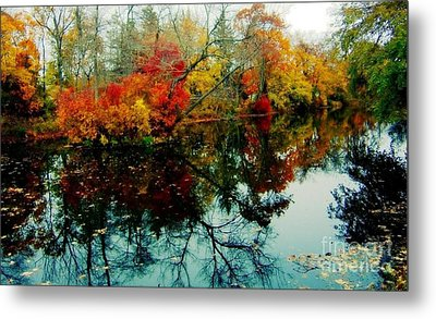 Autumn Reflections Metal Print by Holly Martinson