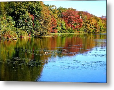 Autumn Reflections Metal Print by Susan Elise Shiebler