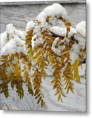 Autumn Snow Metal Print by Michelle Frizzell-Thompson