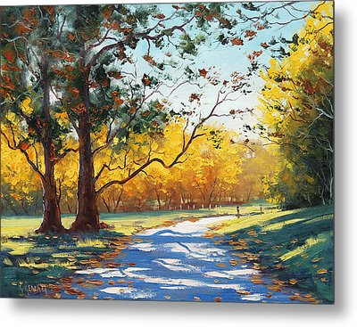 Autumn Splendor Metal Print by Graham Gercken