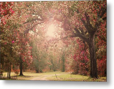 Autumn Splendor Metal Print by Susan Bordelon