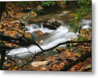 Metal Print featuring the photograph Autumn Spring by Joan Bertucci