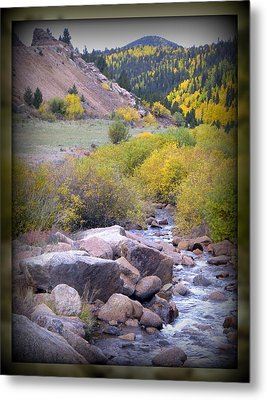 Autumn Stream Metal Print by Michelle Frizzell-Thompson