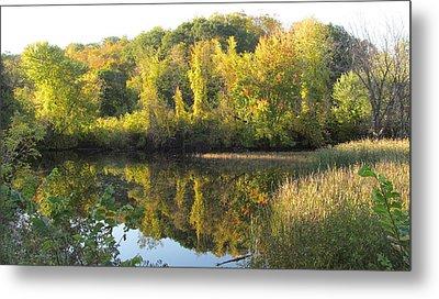 Autumn Sunlight On The Pond Metal Print