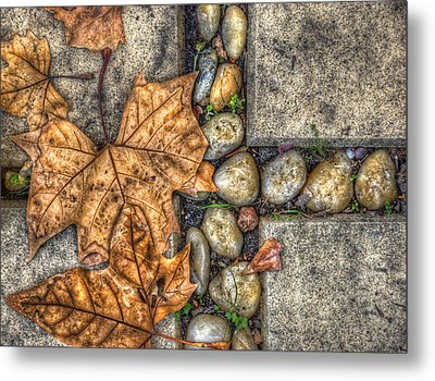Autumn Texture Metal Print by Wayne Sherriff