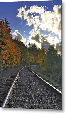 Autumn Tracks Metal Print