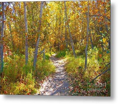 Autumn Trail Metal Print by Jim Sauchyn