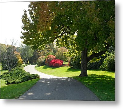 Autumn Metal Print by Val Oconnor