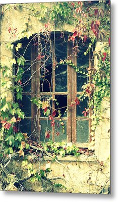 Autumn Vines Across A Window Metal Print