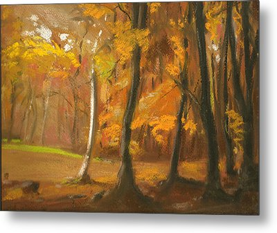 Autumn Woods 5 Metal Print by Paul Mitchell