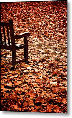 Metal Print featuring the photograph Autumnal Colours by Lenny Carter