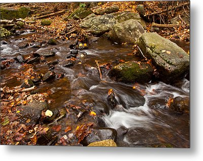 Autumns Creek Metal Print by Karol Livote