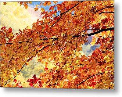 Autumns Gold Great Smoky Mountains Metal Print by Rich Franco