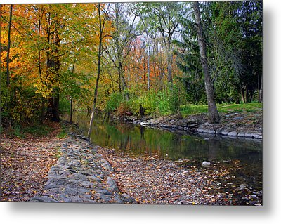 Autumn's Splendor Metal Print by Kay Novy