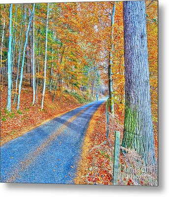 Autumns Way Bleu  Metal Print by John Kelly