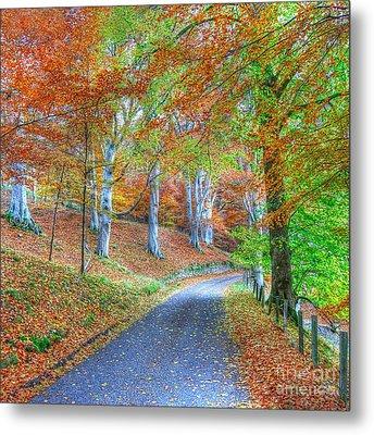 Autumns Way Vert Metal Print by John Kelly