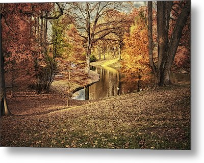 Metal Print featuring the photograph Awesome Autumn by Mary Timman
