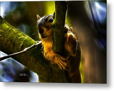 Awww Shucks- Fractal - Robbie The Squirrel Metal Print by James Ahn
