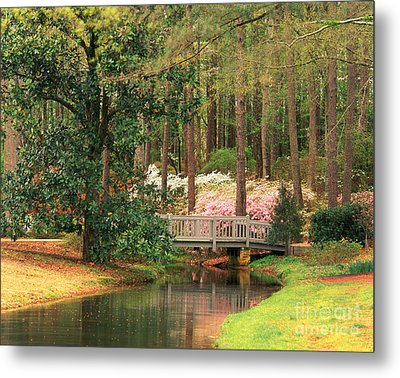 Azaleas And Footbridge Metal Print by Michael Hubrich and Photo Researchers