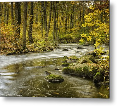 Babbling Brook Metal Print
