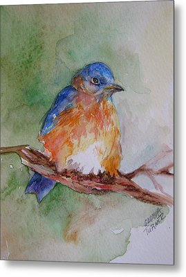 Metal Print featuring the painting Baby Blue Bird by Gloria Turner