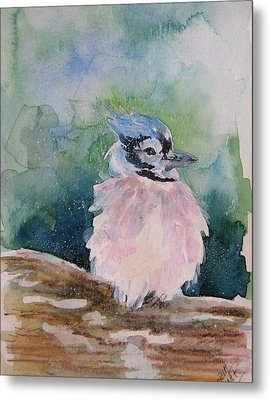 Metal Print featuring the painting Baby Blue Jay by Gloria Turner