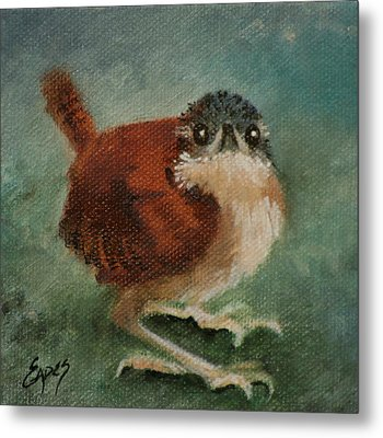 Baby Carolina Wren 2 Metal Print by Linda Eades Blackburn