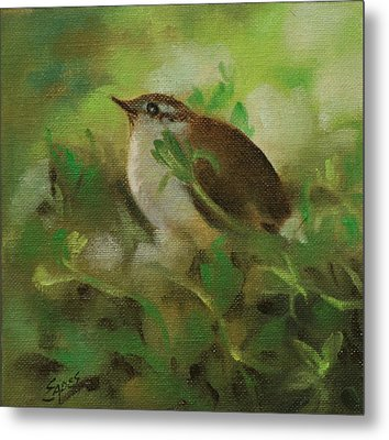 Baby Carolina Wren Metal Print by Linda Eades Blackburn