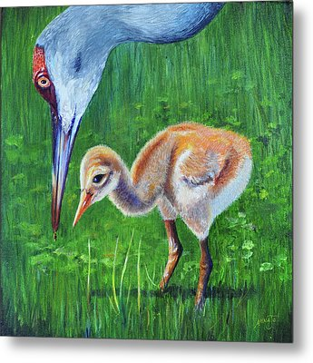 Metal Print featuring the painting Baby Crane's Lesson by AnnaJo Vahle