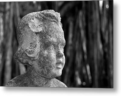 Baby Face Metal Print by David Lee Thompson