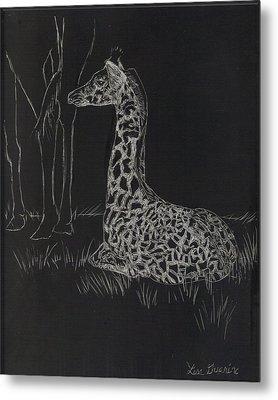 Baby Giraffe Metal Print by Lisa Guarino